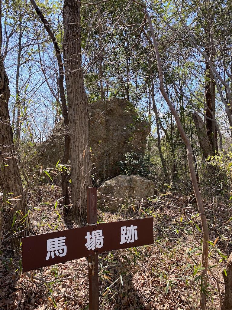 f:id:HIROAKI-ISHIWATA:20200320124411j:image