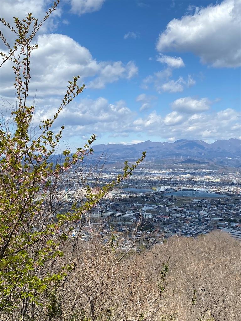 f:id:HIROAKI-ISHIWATA:20200320124424j:image