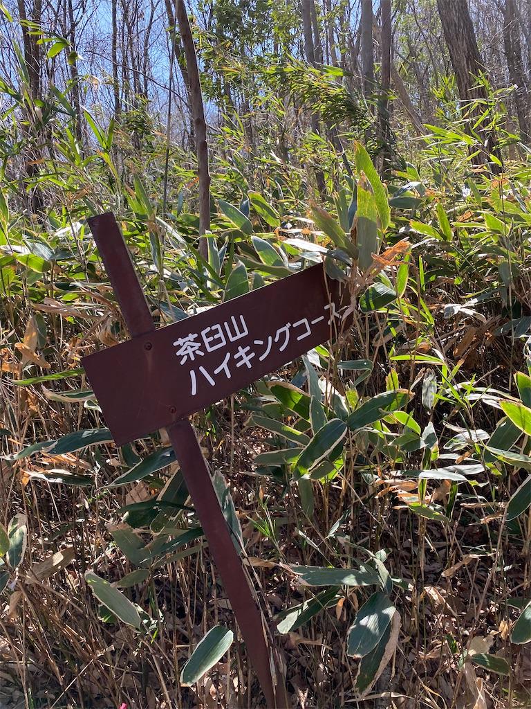 f:id:HIROAKI-ISHIWATA:20200320124554j:image