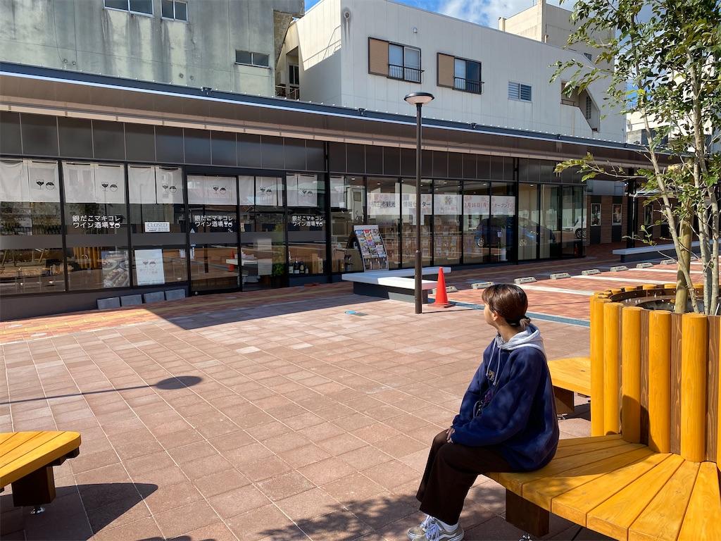 f:id:HIROAKI-ISHIWATA:20200320124607j:image