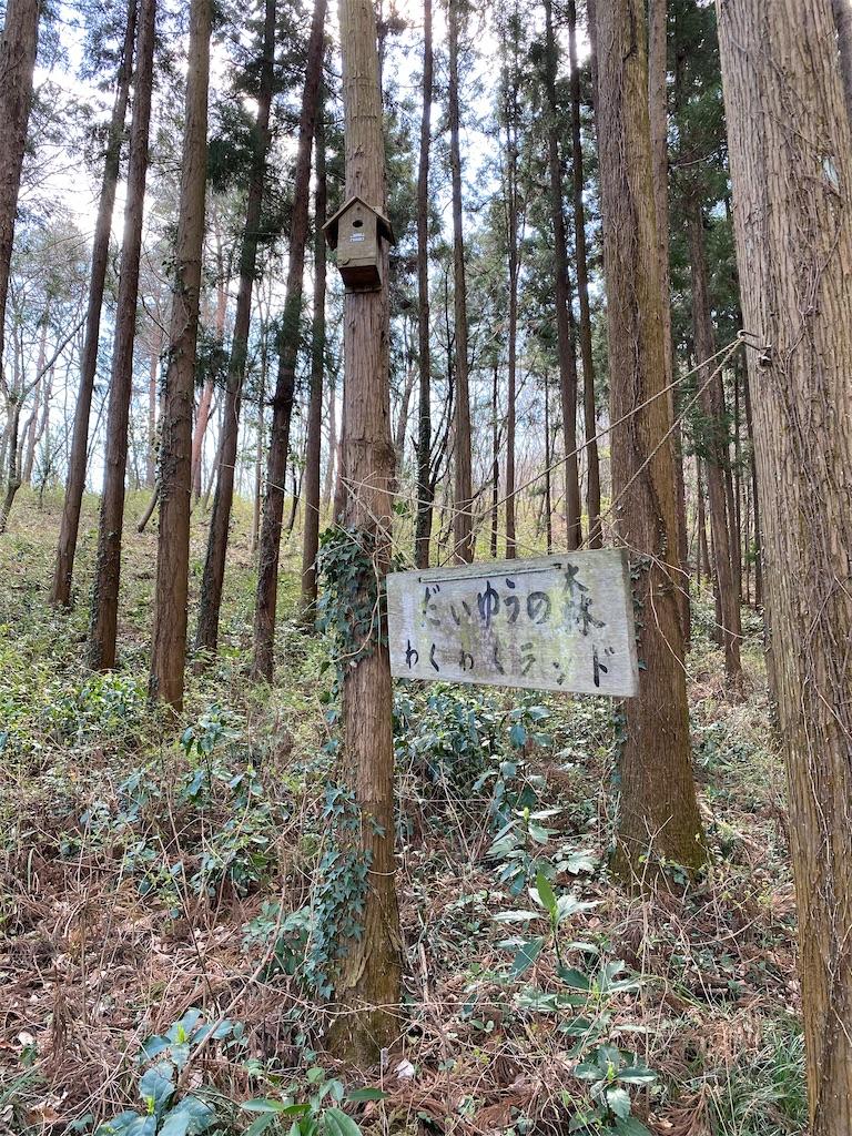 f:id:HIROAKI-ISHIWATA:20200320124646j:image