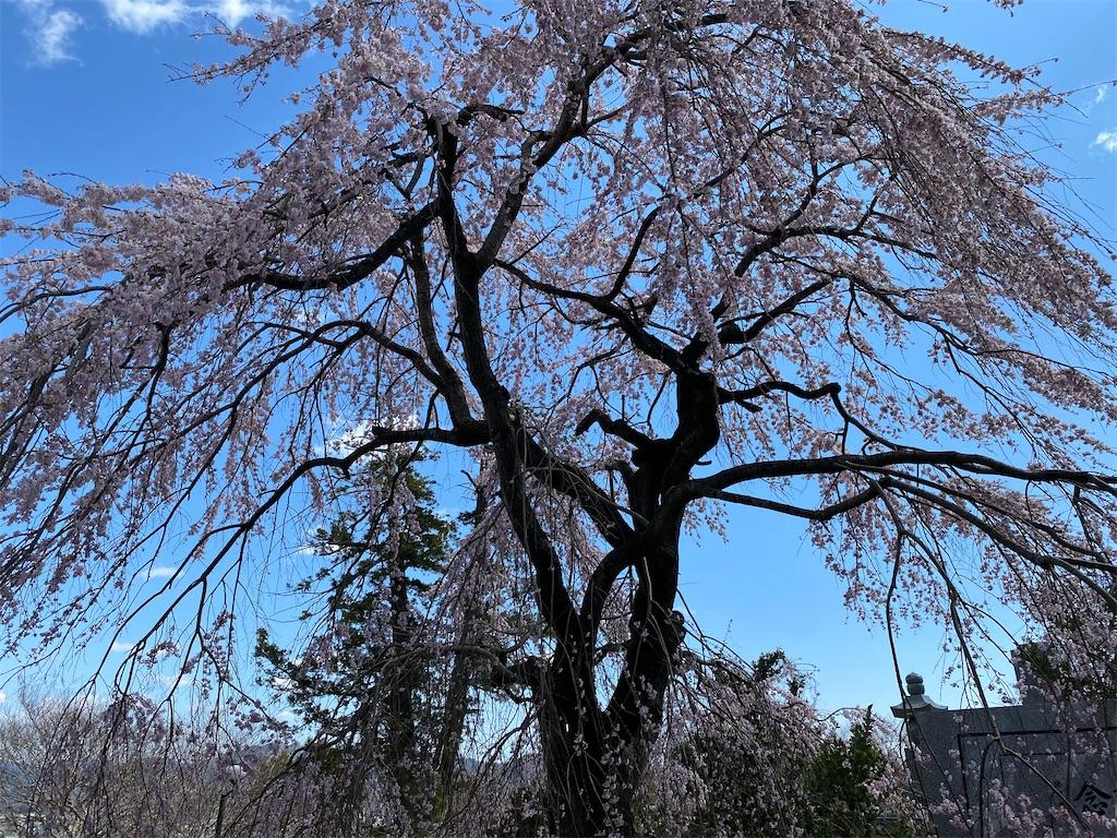 f:id:HIROAKI-ISHIWATA:20200320124700j:image