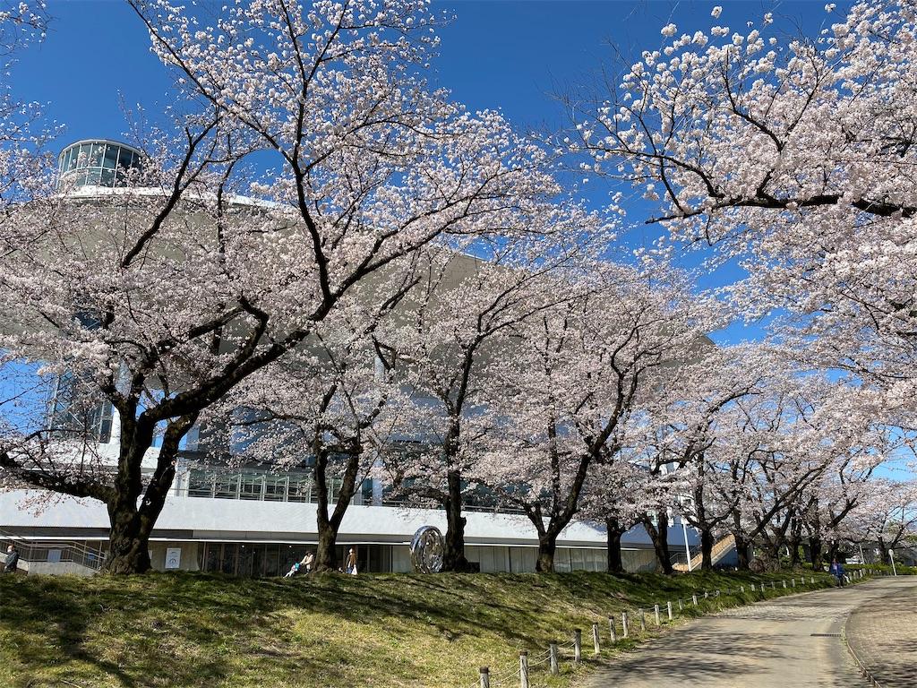 f:id:HIROAKI-ISHIWATA:20200325142713j:image