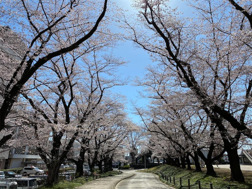 f:id:HIROAKI-ISHIWATA:20200325142738j:image