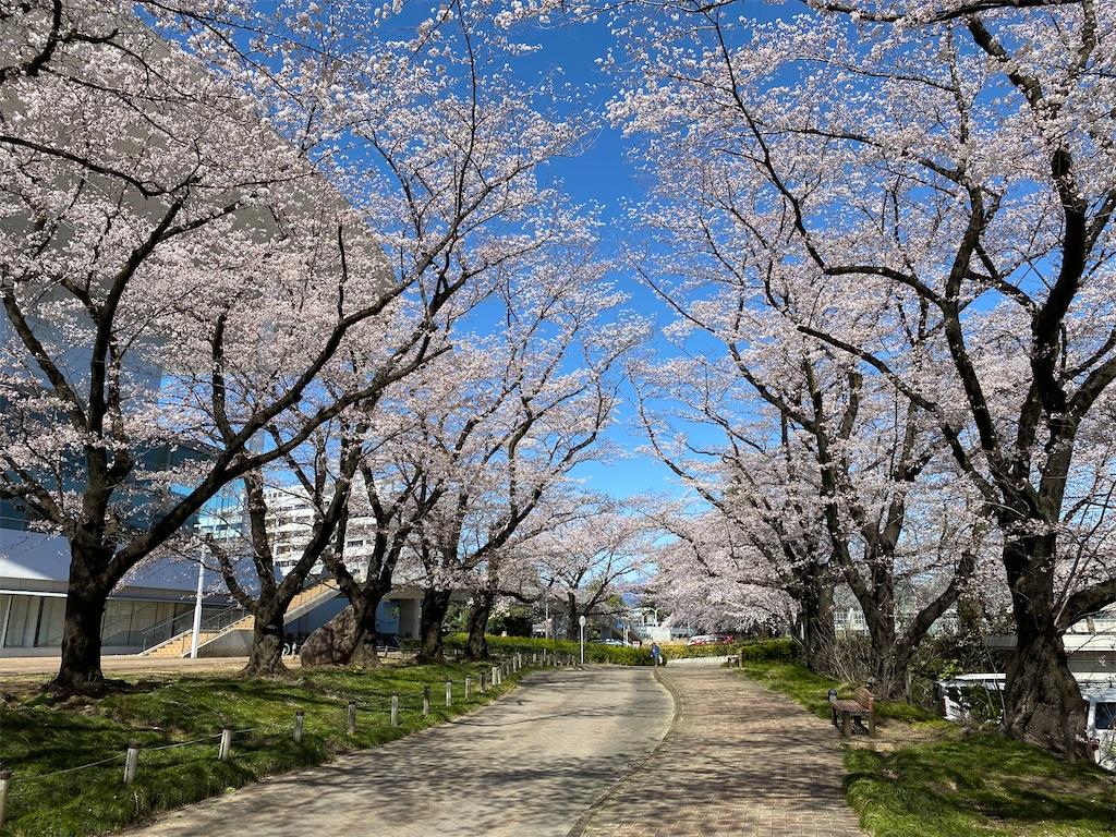 f:id:HIROAKI-ISHIWATA:20200325142850j:image