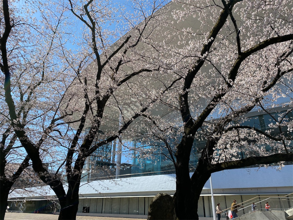 f:id:HIROAKI-ISHIWATA:20200325142952j:image