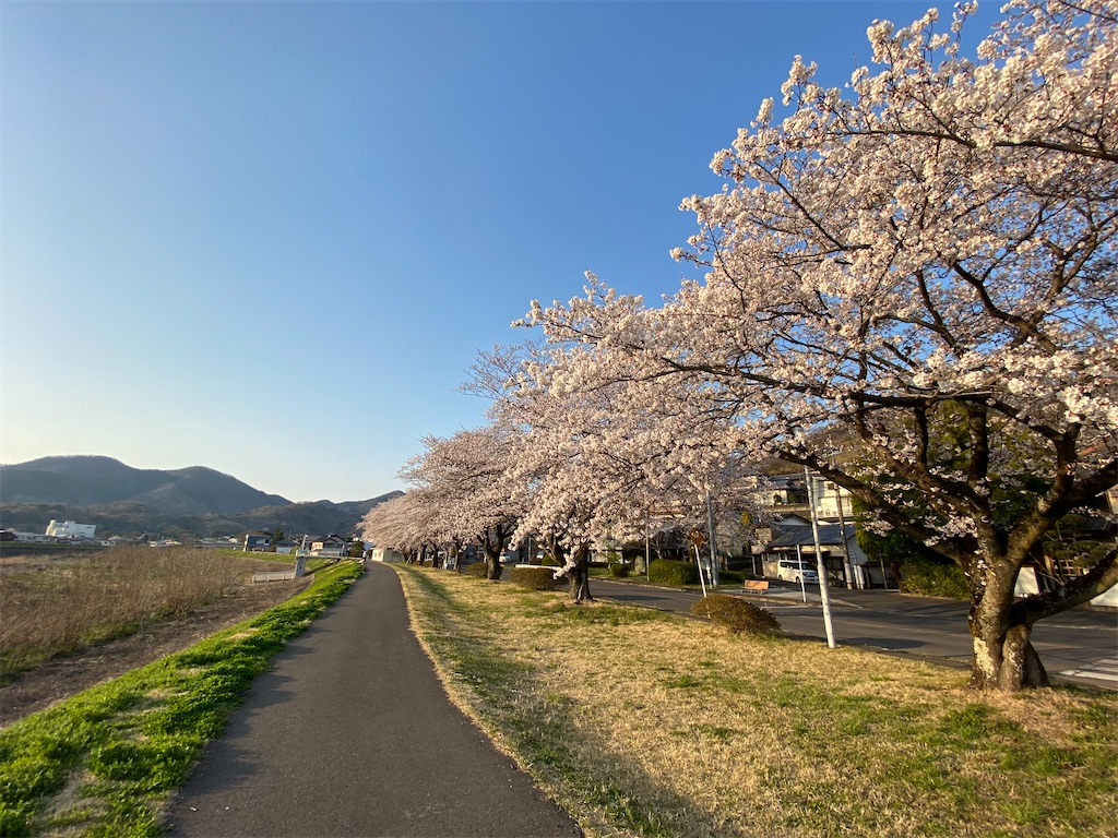 f:id:HIROAKI-ISHIWATA:20200326175617j:image