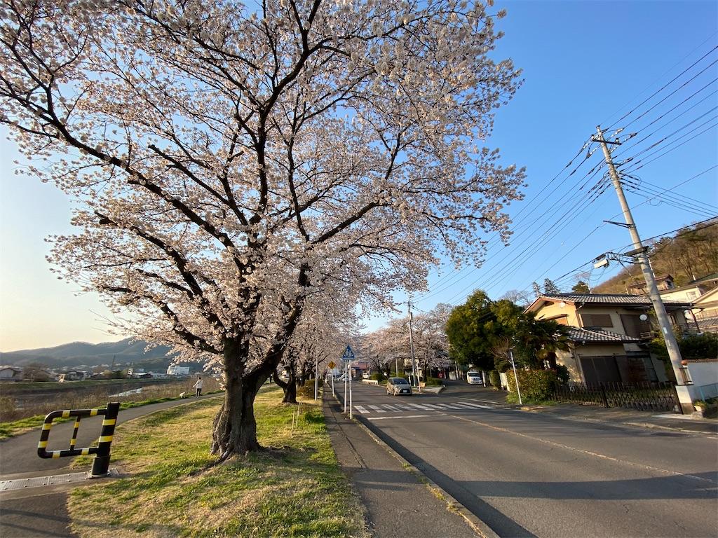 f:id:HIROAKI-ISHIWATA:20200326180726j:image