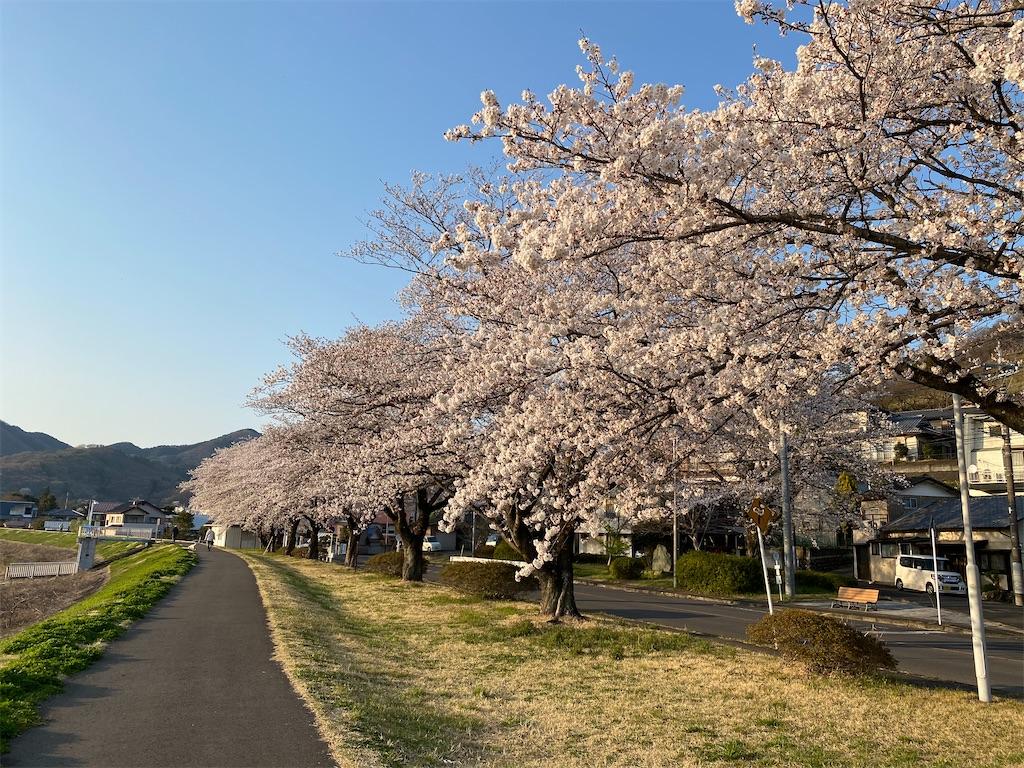 f:id:HIROAKI-ISHIWATA:20200326180841j:image