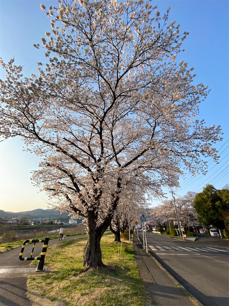 f:id:HIROAKI-ISHIWATA:20200326181059j:image