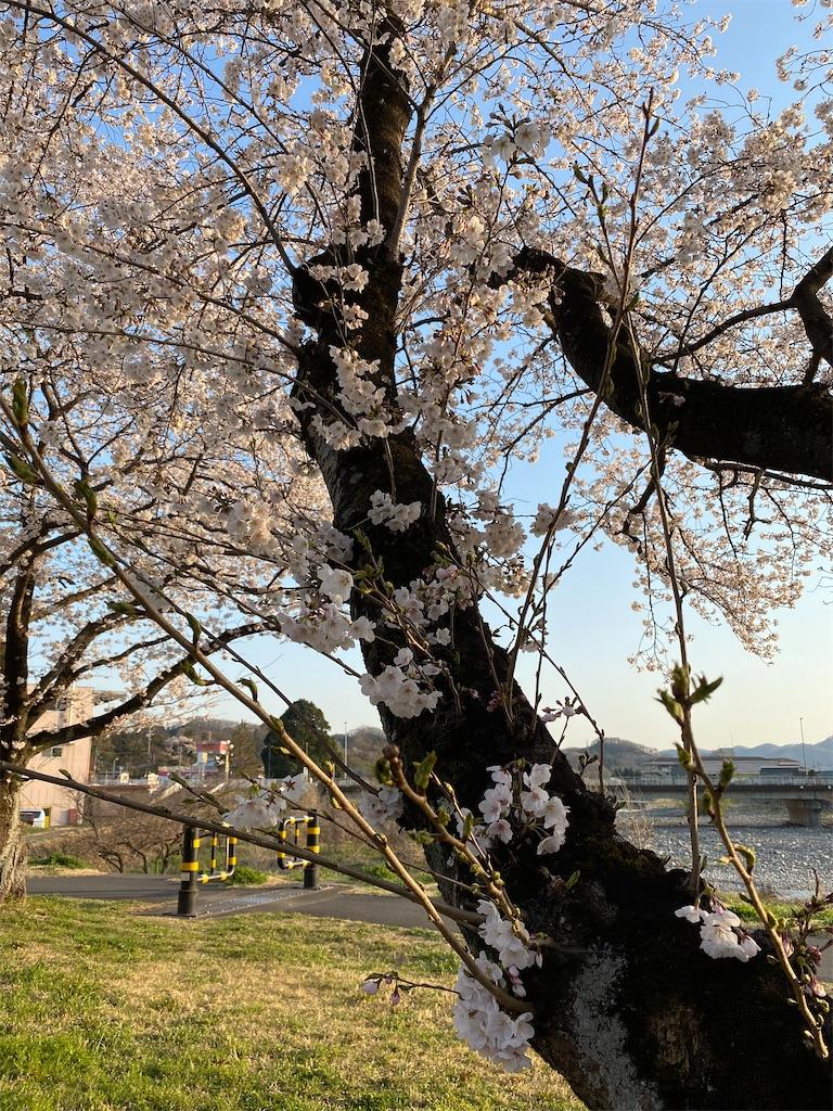 f:id:HIROAKI-ISHIWATA:20200326181611j:image