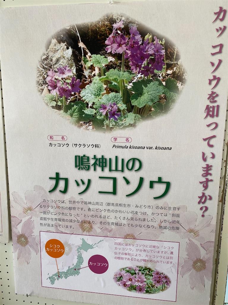 f:id:HIROAKI-ISHIWATA:20200406104520j:image