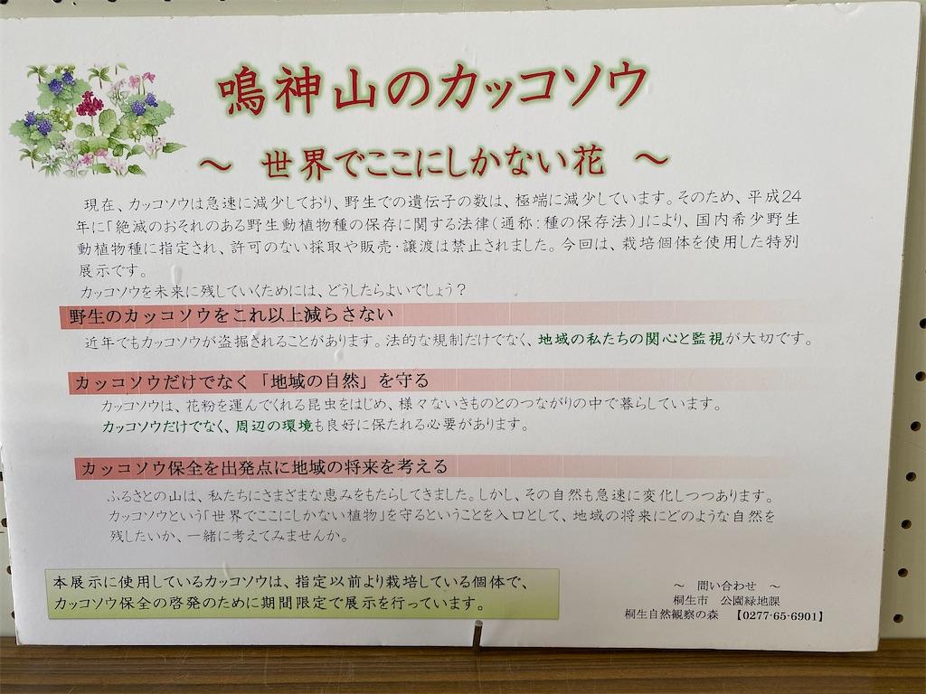 f:id:HIROAKI-ISHIWATA:20200406104523j:image