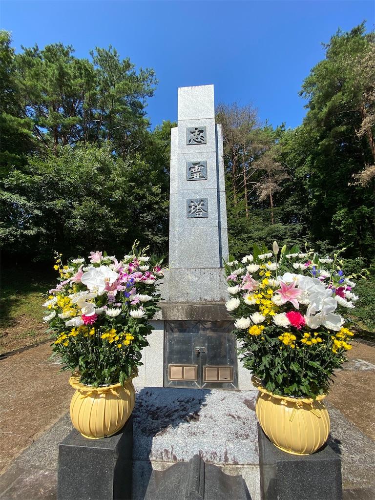 f:id:HIROAKI-ISHIWATA:20200815110338j:image