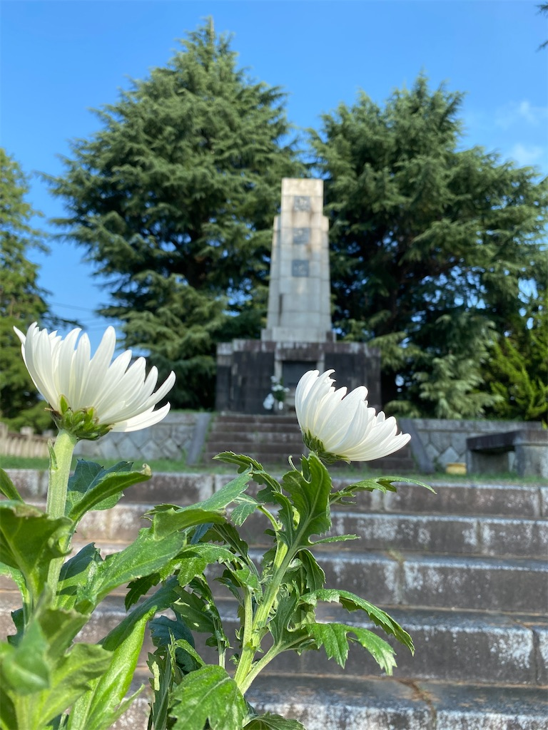 f:id:HIROAKI-ISHIWATA:20200815110409j:image