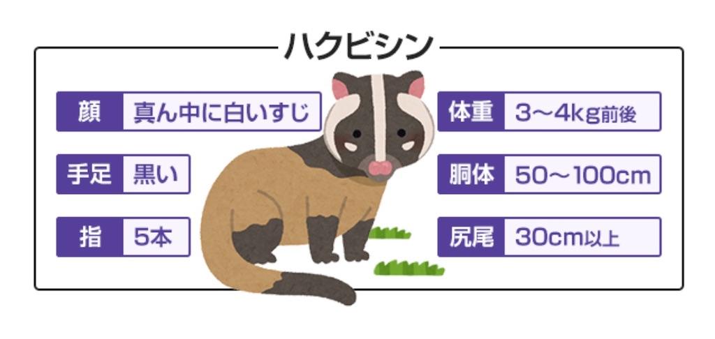 f:id:HIROAKI-ISHIWATA:20200820192530j:image
