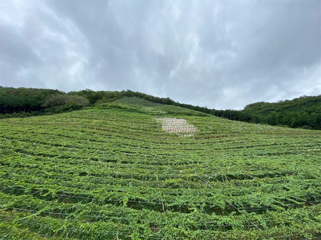 f:id:HIROAKI-ISHIWATA:20200912182126j:image