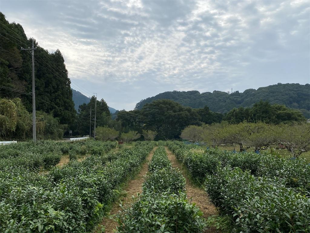 f:id:HIROAKI-ISHIWATA:20201004151806j:image
