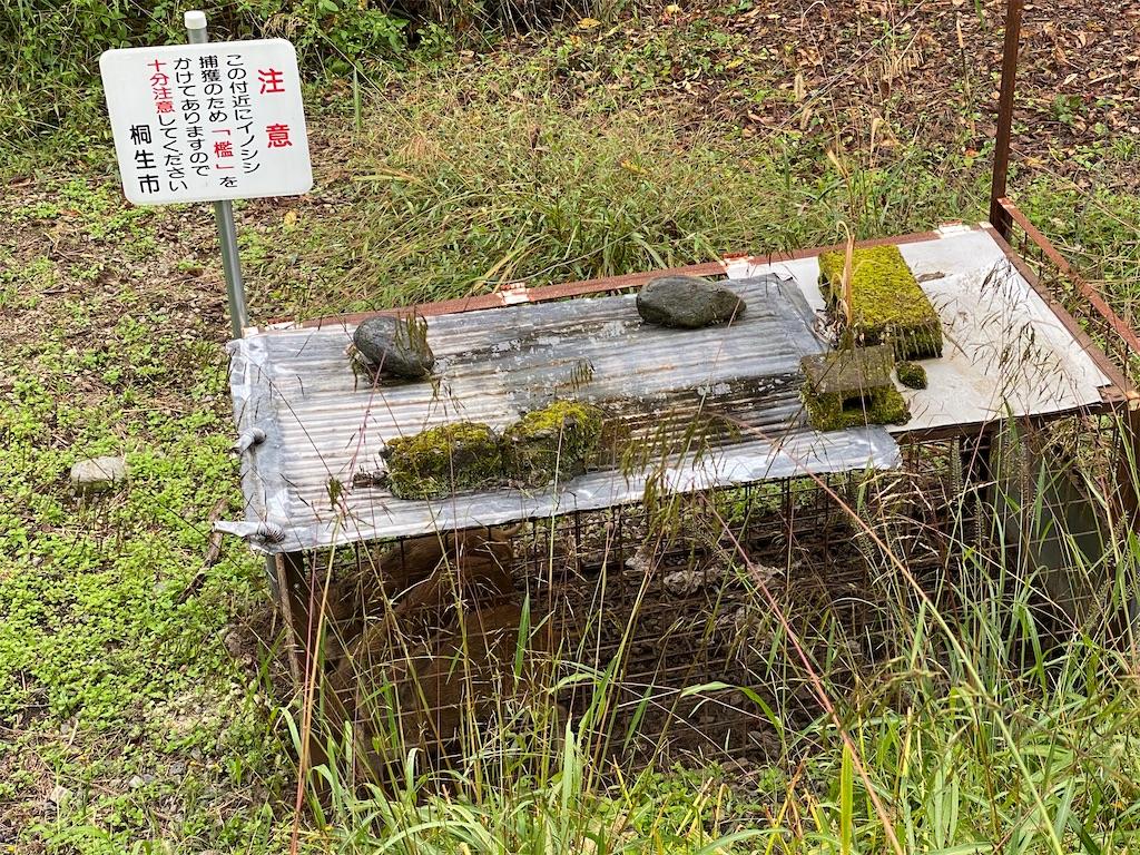 f:id:HIROAKI-ISHIWATA:20201019163333j:image