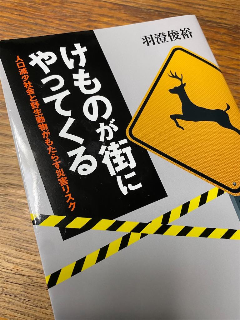 f:id:HIROAKI-ISHIWATA:20201019163508j:image