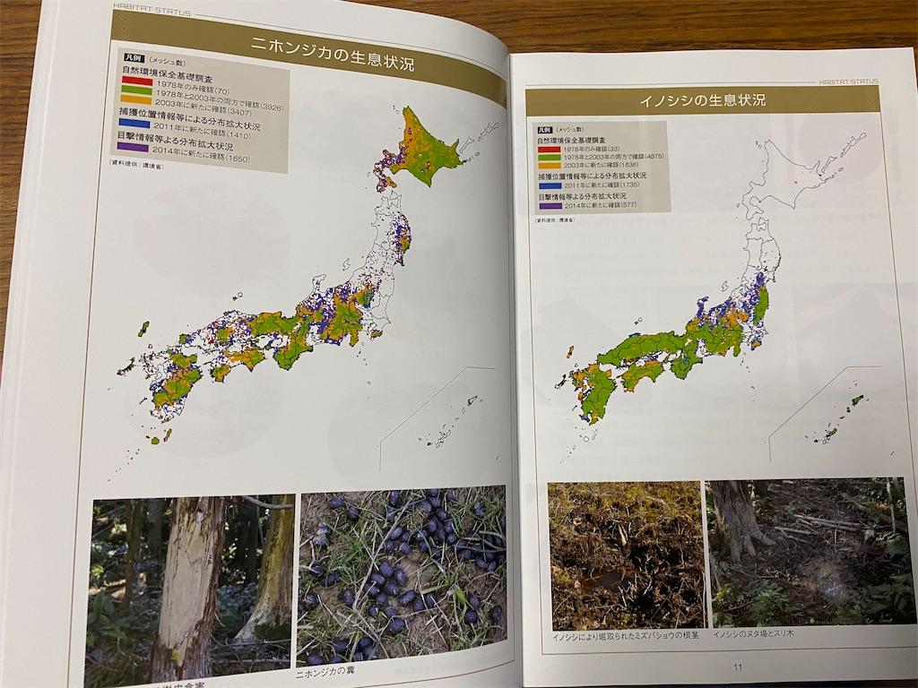 f:id:HIROAKI-ISHIWATA:20201023190930j:image
