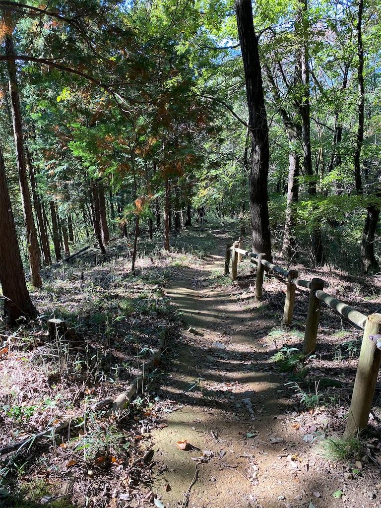 f:id:HIROAKI-ISHIWATA:20201031153827j:image
