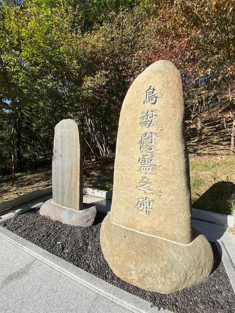 f:id:HIROAKI-ISHIWATA:20201031153910j:image