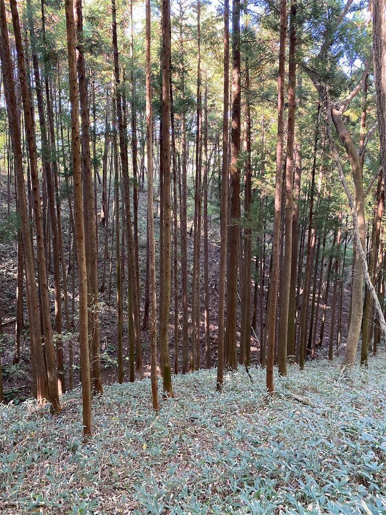 f:id:HIROAKI-ISHIWATA:20201031154038j:image