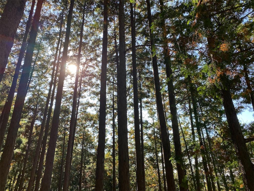 f:id:HIROAKI-ISHIWATA:20201031154144j:image