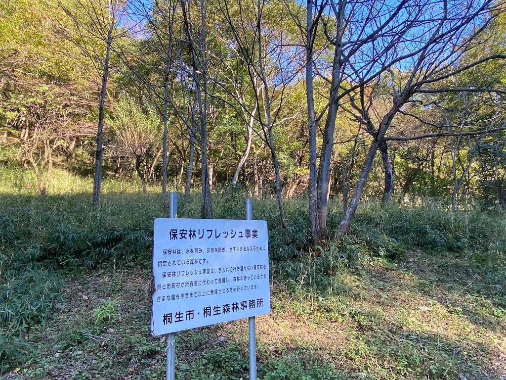 f:id:HIROAKI-ISHIWATA:20201031154159j:image