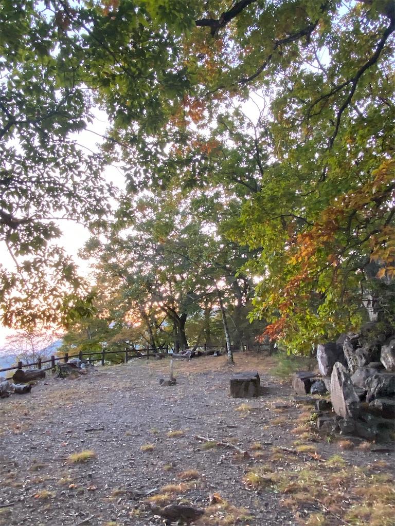 f:id:HIROAKI-ISHIWATA:20201113174911j:image