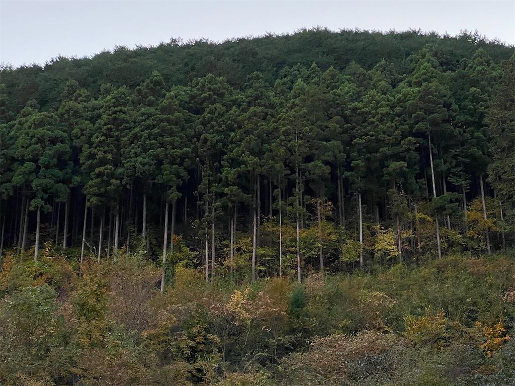 f:id:HIROAKI-ISHIWATA:20201113174922j:image