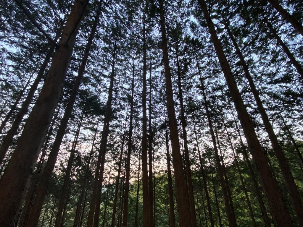 f:id:HIROAKI-ISHIWATA:20201113175008j:image