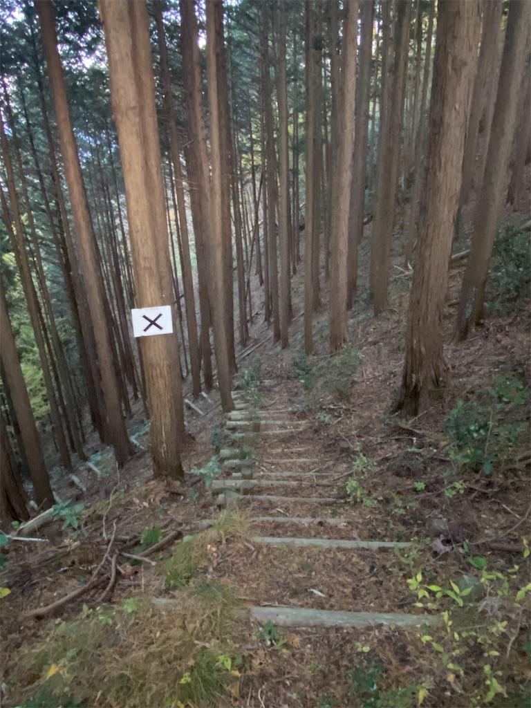 f:id:HIROAKI-ISHIWATA:20201113175127j:image