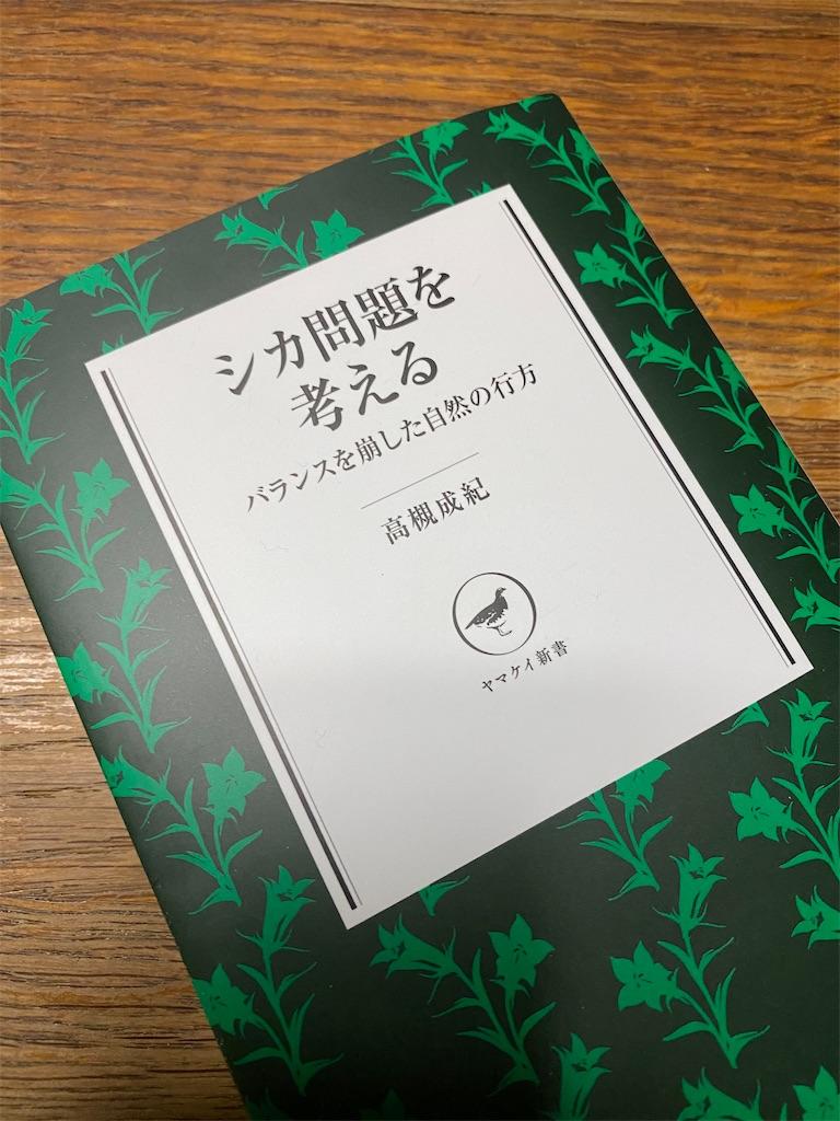 f:id:HIROAKI-ISHIWATA:20201115202724j:image