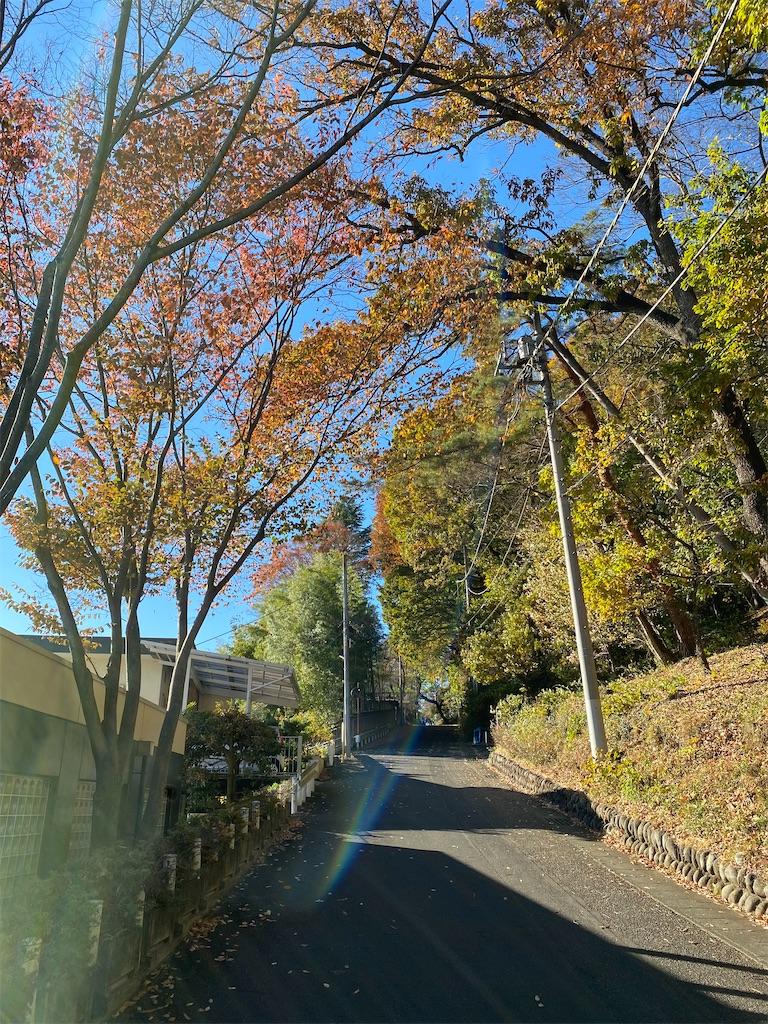 f:id:HIROAKI-ISHIWATA:20201123151905j:image