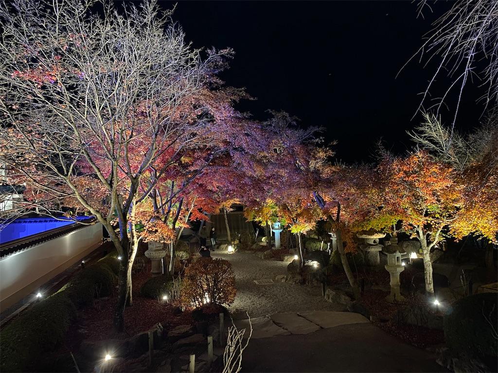 f:id:HIROAKI-ISHIWATA:20201124214243j:image