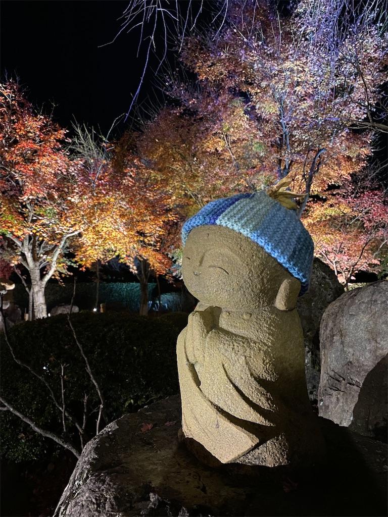 f:id:HIROAKI-ISHIWATA:20201124214419j:image
