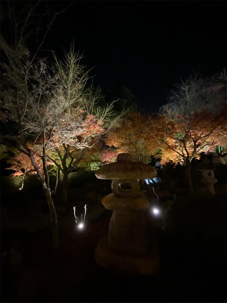 f:id:HIROAKI-ISHIWATA:20201124214452j:image