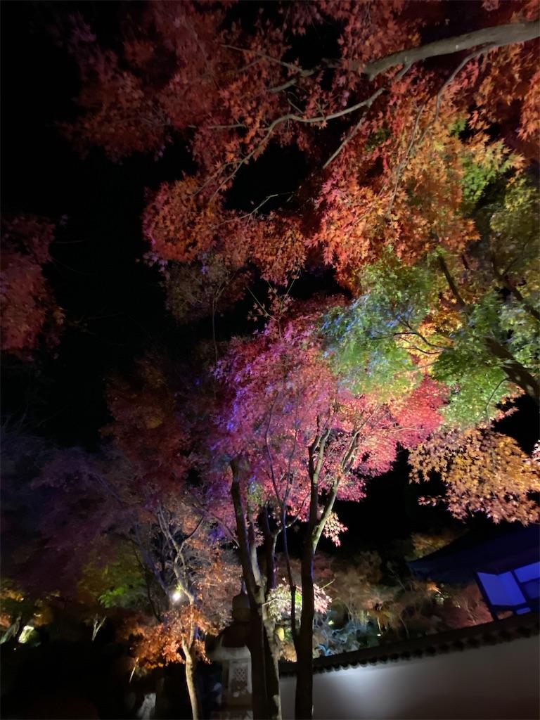 f:id:HIROAKI-ISHIWATA:20201124214513j:image
