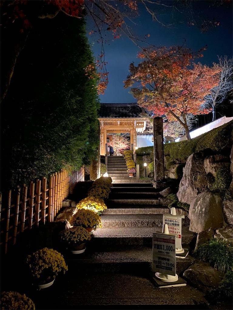f:id:HIROAKI-ISHIWATA:20201124214517j:image