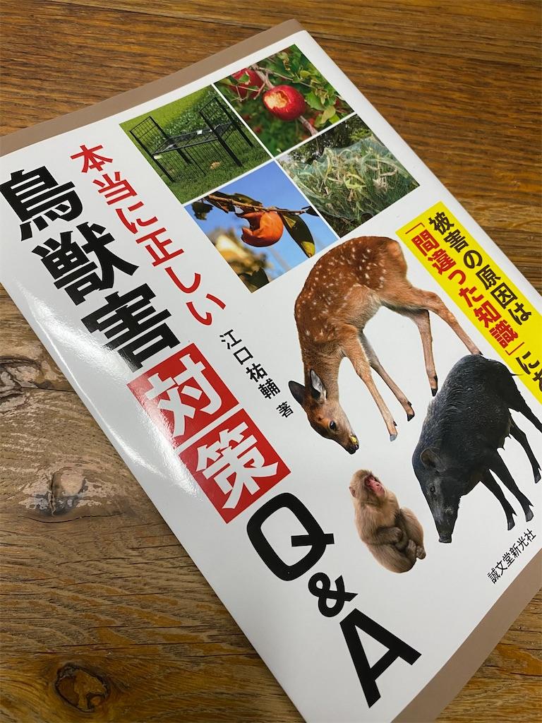 f:id:HIROAKI-ISHIWATA:20201126193410j:image