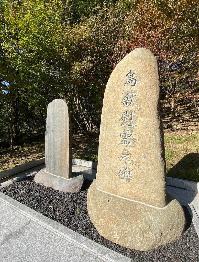 f:id:HIROAKI-ISHIWATA:20201226203505j:image