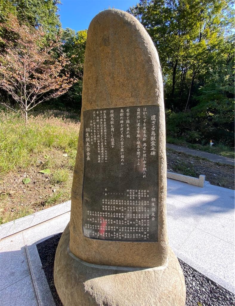 f:id:HIROAKI-ISHIWATA:20201226203530j:image