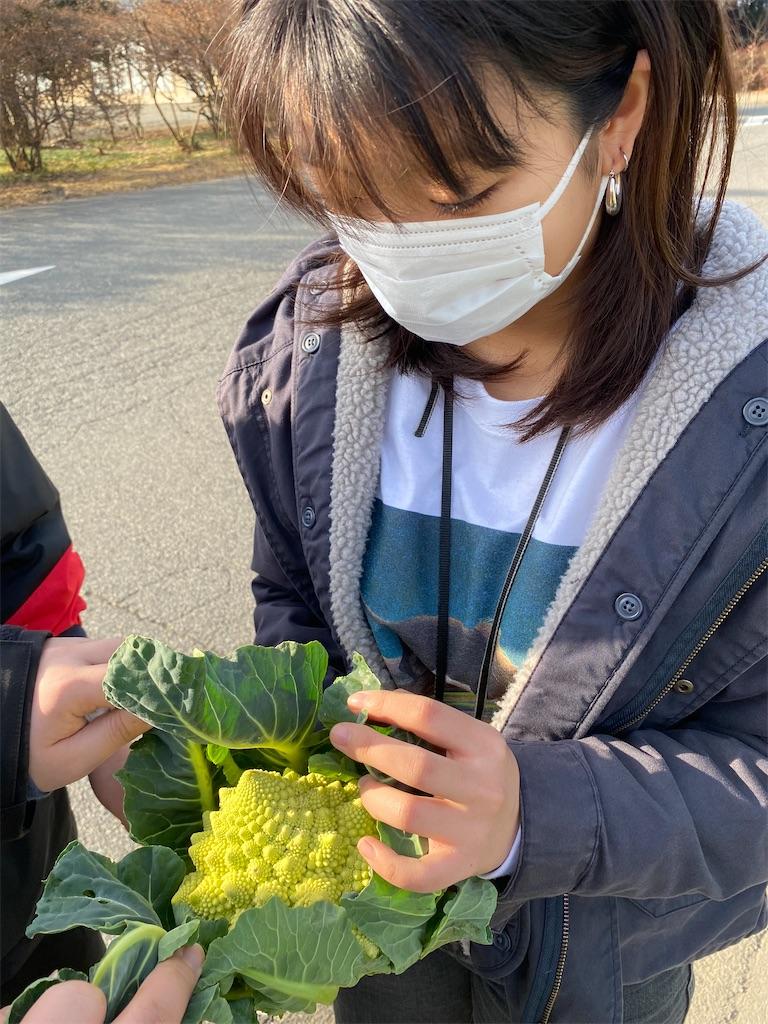 f:id:HIROAKI-ISHIWATA:20201229205138j:image