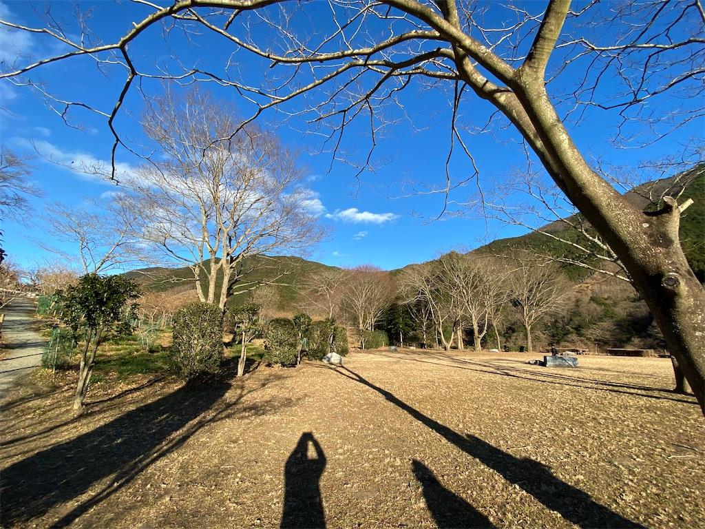 f:id:HIROAKI-ISHIWATA:20210101162724j:image