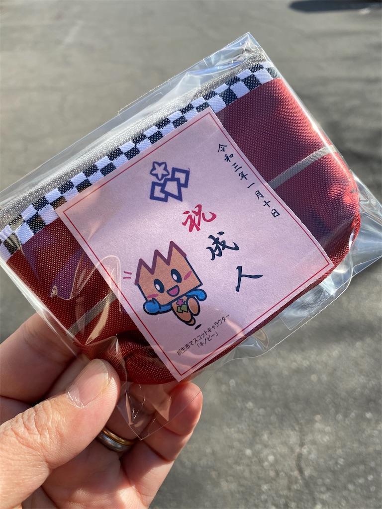 f:id:HIROAKI-ISHIWATA:20210110202131j:image