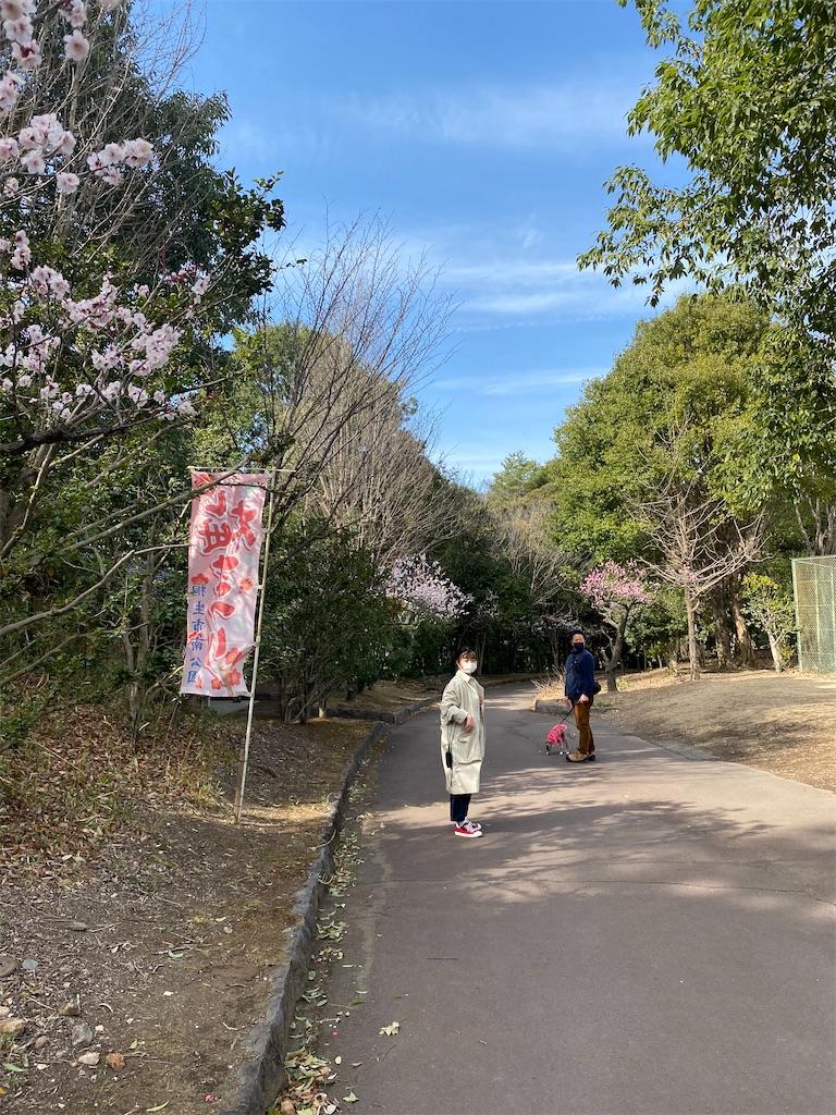 f:id:HIROAKI-ISHIWATA:20210306153920j:image