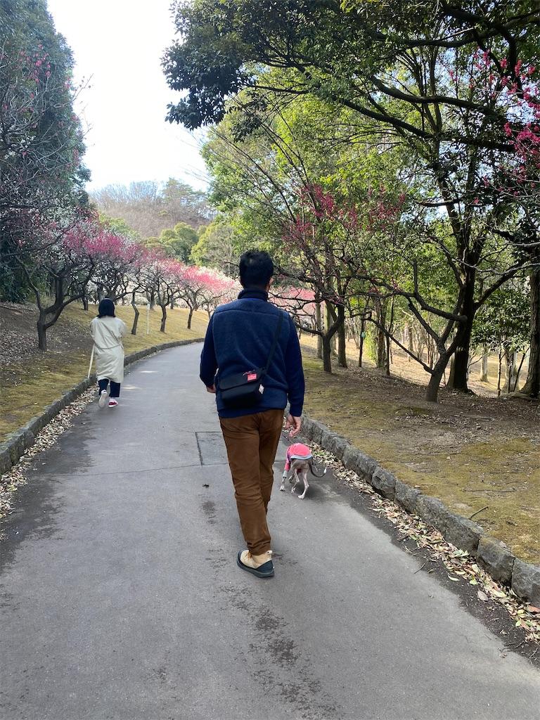 f:id:HIROAKI-ISHIWATA:20210306154025j:image
