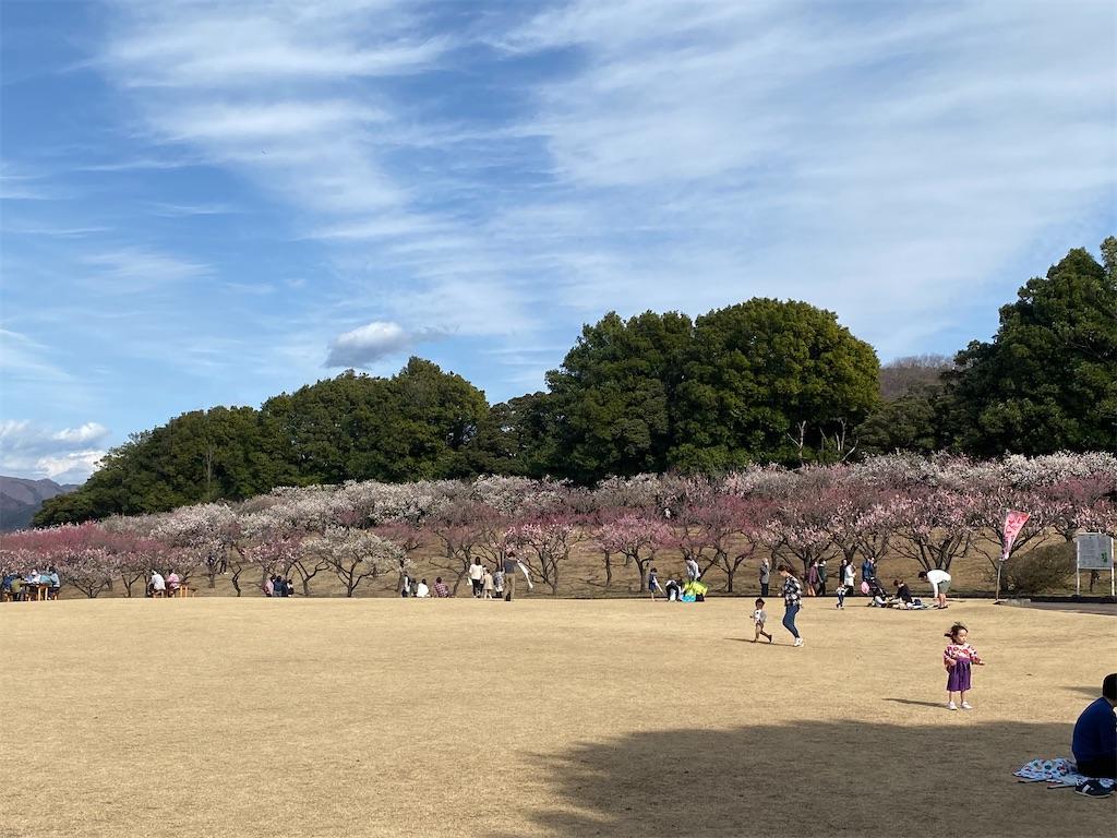 f:id:HIROAKI-ISHIWATA:20210306154104j:image